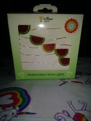 ❤✨❤✨❤BRAND NEW BATTERY OPERATED LED WATERMELON WIRE LIGHTS❤✨❤✨❤