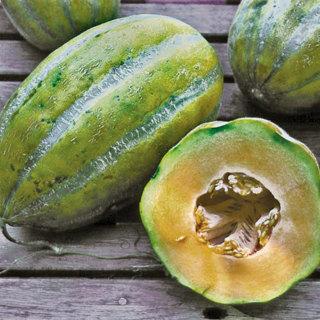Casaba Melon--10 seeds
