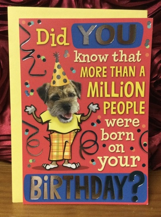 Dog Wearing Birthday Hat Card