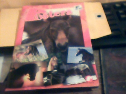 Horse poster book