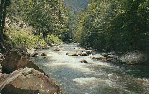 Vintage Used Postcard: Little River between Elkmont & Townsend, TN