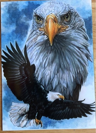 "EAGLE ART - 4 x 5"" MAGNET"