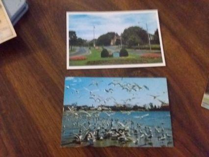 Swampscott,Massachusetts postcards