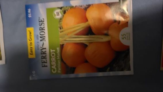 Carrot- bag 10