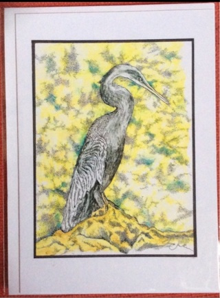 "ANHINGA BIRD - 5 x 7"" art card by artist Nina Struthers - GIN ONLY"