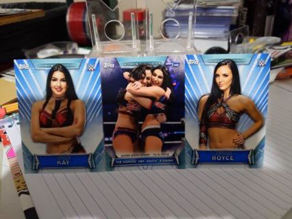 2019 Topps WWE Women's Division Iconics cards Peyton Royce & Billie Kay