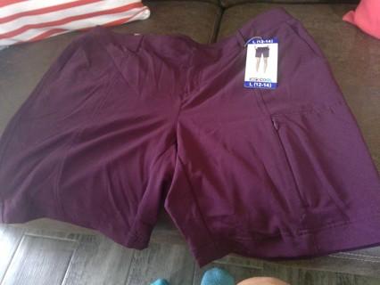 NWT ladies shorts