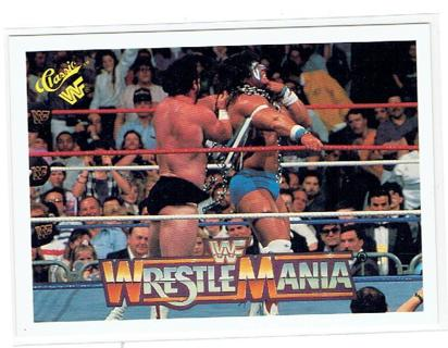 Image result for ultimate warrior wrestlemania card classic