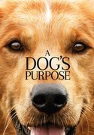 A Dog's Purpose!! UV-MA-Digital Copy-(VUDU REDEEM)!!