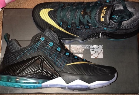 Men's size 9 Lebron's Xll Low Basketball Shoe