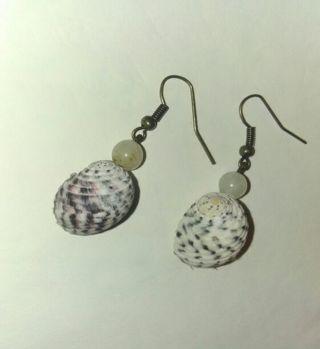 Sea shell hand made earrings