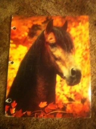 Horse Folder School Supplies Back To Filing File Etc
