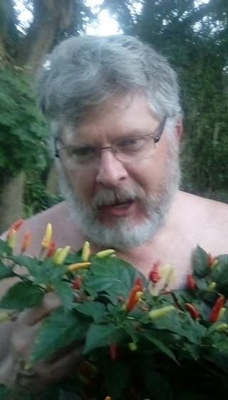 Ralph's Hot pepper seeds