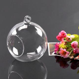 Hanging Glass Ball Vase Flower Plant Pot Terrarium Container
