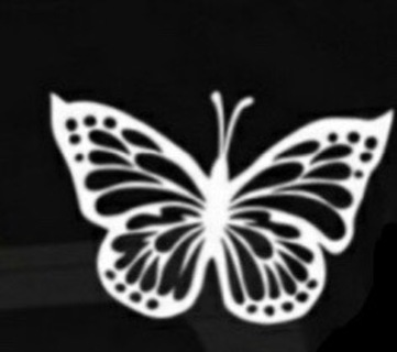 ☺White☆Butterfly☆☺Vinyl☆Decal☺