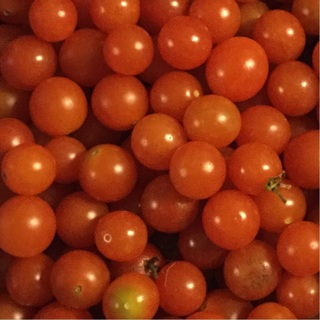 Currant tomatoes!