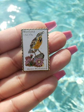 Collectible USPS Montana USA 20c western meadowlark & Bitterroot pin.