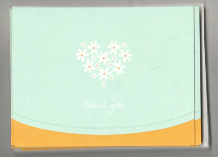 Thank You Card Unused With Envelope Blank Inside