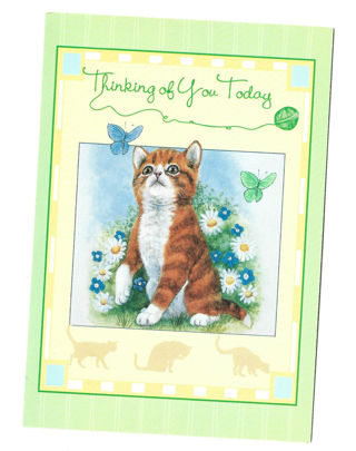 Thinking of you Note Card Unused With Envelope Cat