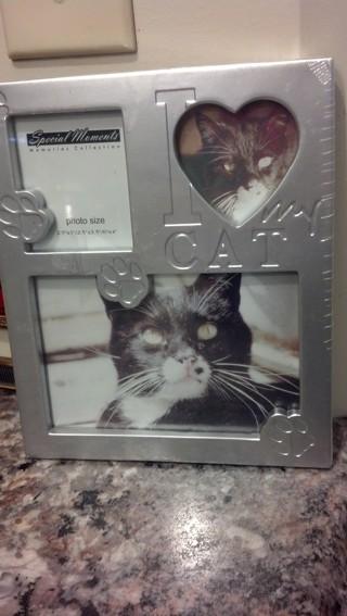 Free I Love My Cat Frame Home Decor Listiacom Auctions For