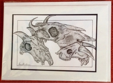 "GOAT & COW SKULL STUDY  - 5 x 7"" Art Card by artist Nina Struthers - GIN ONLY"