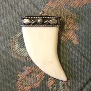Sterling Silver Bone Claw