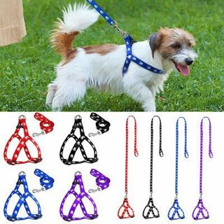 Small Dog Harness and Leash Set Paw Print Cute Soft Nylon for Pet Puppy Walking