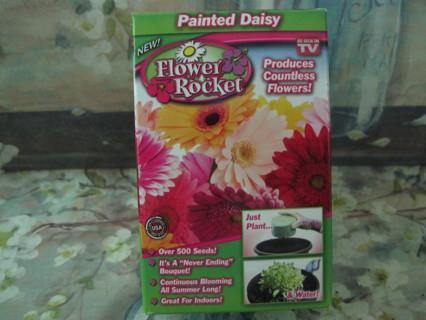 Painted Daisy Flower Rocket