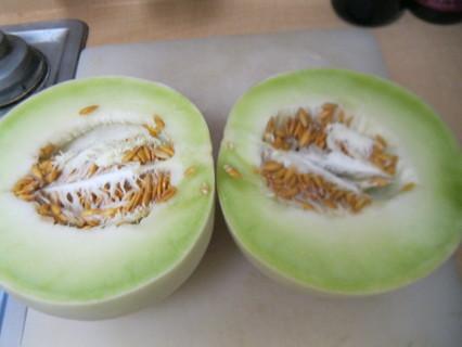 10+ Honey Dew Melon Seeds