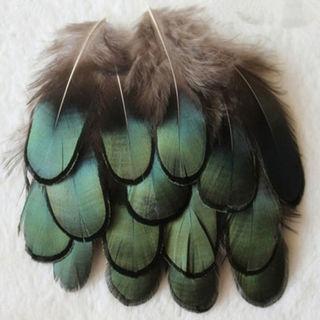 20X/Set Caragana Feathers Green Natural Feather