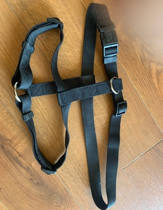 Harness Heavy Duty for Large Dog used only once