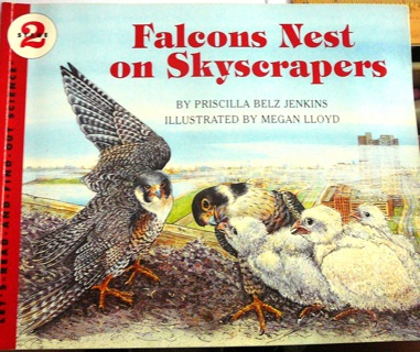 """Falcon's Nests on Skyscrapers"" Children's Learning Book"