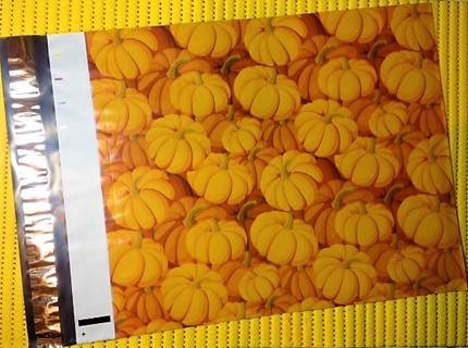 """7 HOLIDAY PUMPKINS 10"""" x 13"""" Poly Mailers"""