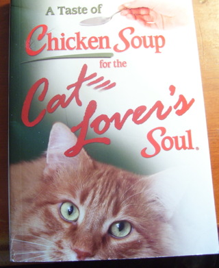 A Taste of Chicken Soup for the Cat Lovers Soul, Paperback