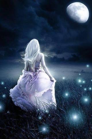 New Magic of moonlight photo
