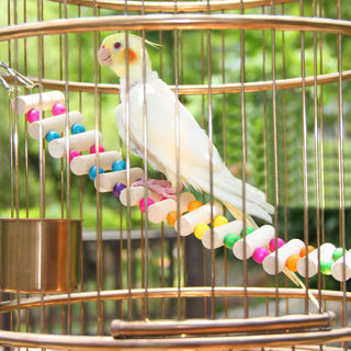 [GIN FOR FREE SHIPPING] Wooden Hanging Bird Parrot Toys Parakeet Cockatiel Drawbridge