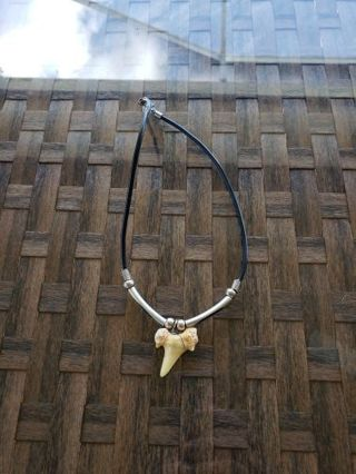 Vintage shark tooth necklace on cord 80's /90's