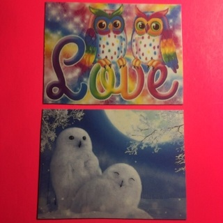 Owl magnets!