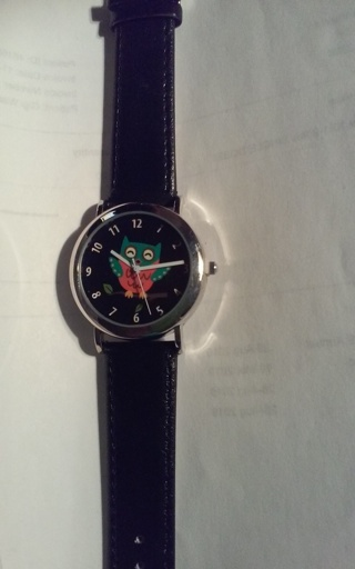 NIP Owl Wrist Watch