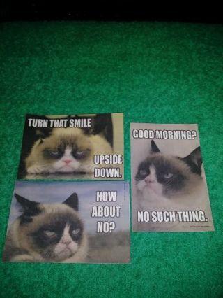 """⚛✨⚛✨⚛3 BRAND NEW """"GRUMPY CAT"""" STICKERS⚛✨⚛✨⚛LAST SET!"""