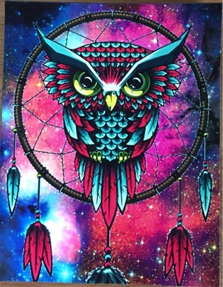 """OWL AND DREAM CATCHER - 3 x 5"""" MAGNET"""