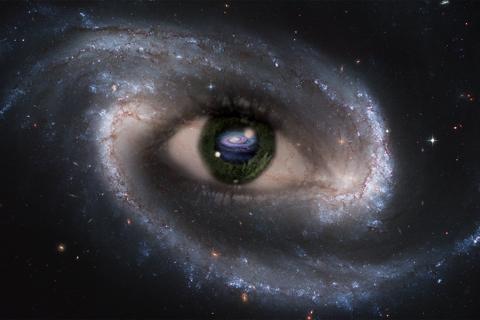 Starry Eye ~ 4X6 Photo ~ FREE SHIPPING