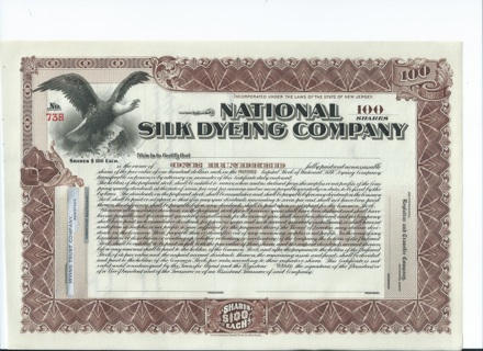 National Silk Dyeing stock certificate Early 1900s Eagle on mountaintop Paterson NJ