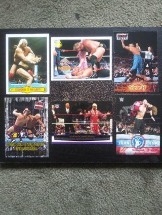 WWF/WWE Past Champions (Hogan, DiBiase, HHH & More)