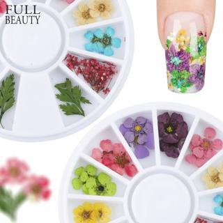24pcs/Wheel Mixed Natural Nail Dried Flower DIY 3D Pressed  Blossom Flower Leaf Slider Sticker Pol