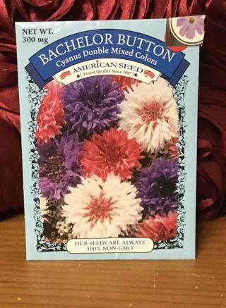 Bachelor Button Seeds