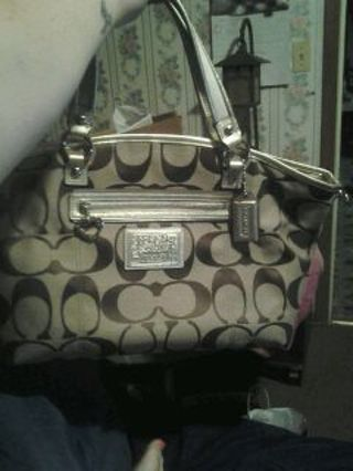 Coach Hobo Style Bag New Without Tags
