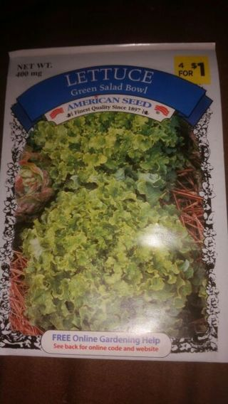 Green salad bowl lettuce, 400mg.