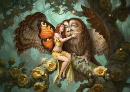 New Fairy owl Photo 4x6