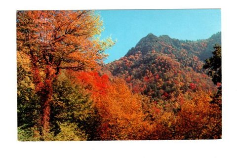 Vintage Used Postcard: 1970 Chimney Tops, TN